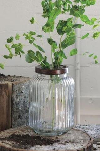 Amazon Creative Glass Jar With Wire Frog Lid Home Kitchen