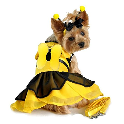 Funny Dog Halloween Costume by Doggie Design - ALL SIZES (Bumblebee, S) - Puppy Bumble Bee Costume