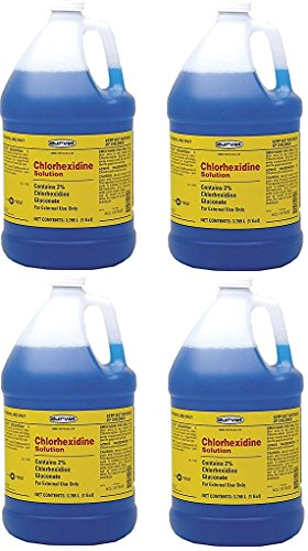 (Case of 4) Chlorhexidine 2% for Horses & Dogs, One Gallon