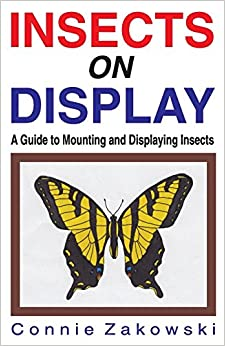 Insects on Display: A Guide to Mounting and Displaying Insects