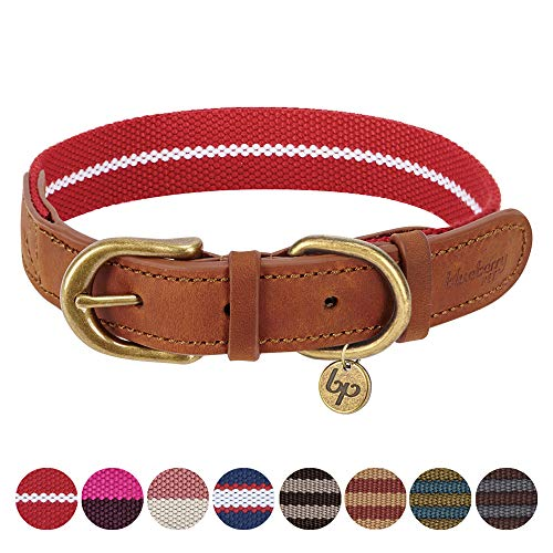 Blueberry Pet 8 Colors Polyester Fabric Webbing and Soft Genuine Leather Dog Collar in Red and White, Large, Neck 18