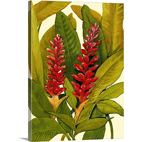 Tropical Red Ginger Canvas Wall Art Print, 18