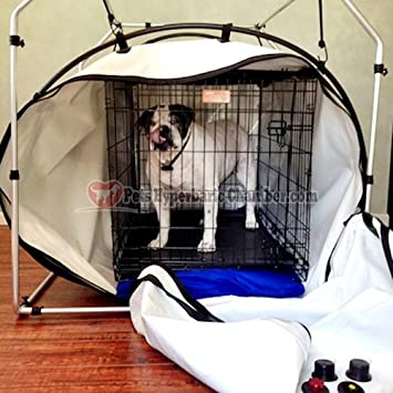 Hyperbaric Oxygen Chamber Therapy for Pets (Hbot) Made in USA : dog oxygen tent - memphite.com
