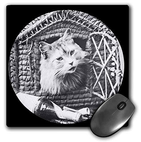 3dRose Scenes from The Past Magic Lantern - Vintage Comical cat in Basket House Champagne and Pipe Victorian 1890 - Mousepad - Pipe Champagne