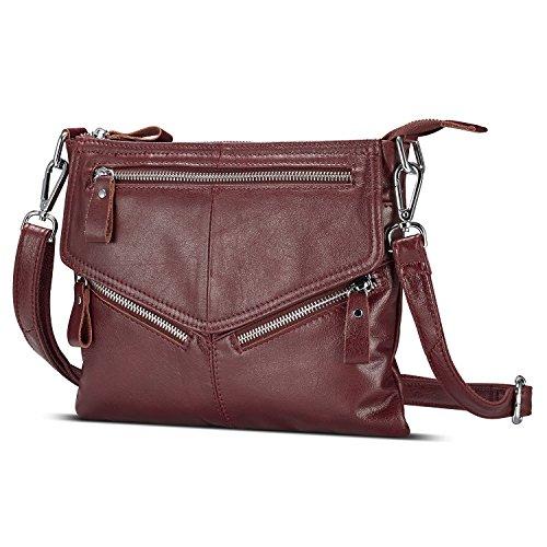 Lecxci Women's Small Soft Leather Travel Purses, Zipper Cross body Bags Shoulder Purses for Women Dark Brown