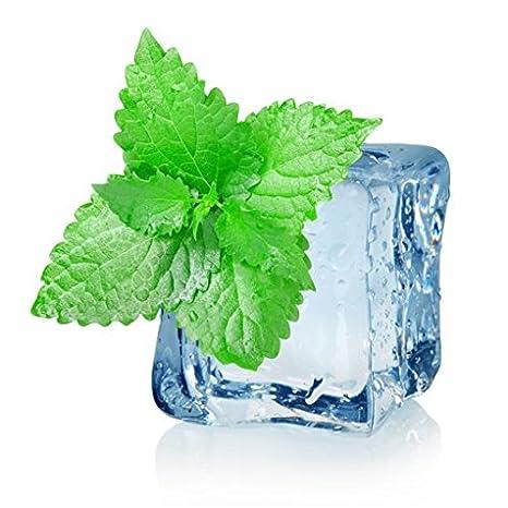 GEL de MENTA PIERNAS CANSADAS 250 ml Gel Refrescante Alivio del Dolor Piernas - Circulación: Amazon.es: Belleza