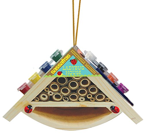 Sassafras My Little Garden: Paint Your Own Wooden Ladybug House Paint Kit ()