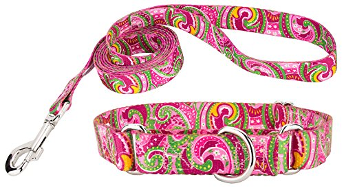 Country Brook Design® Pink Paisley Martingale Dog Collar & Leash Set-Large