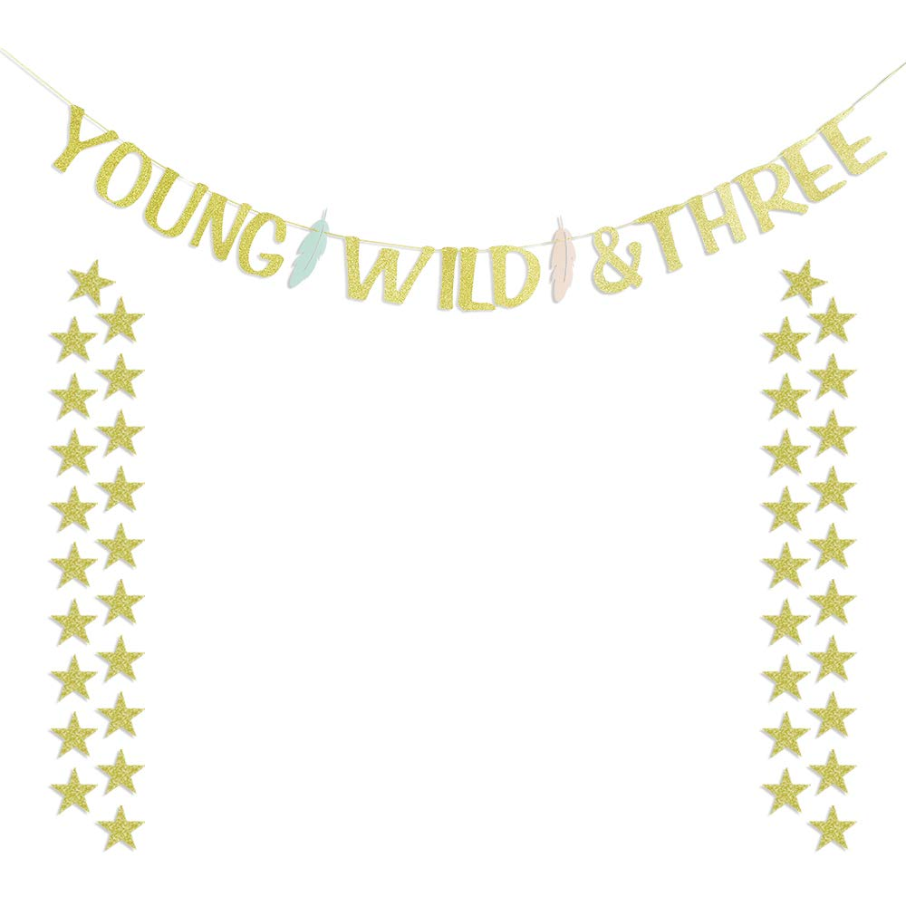Young Wild and Three Feather Banner with 40 Gold Star Garlands Boy Girl Third Birthday 3 Year Old Baby Party Decorations   B07JYMJC9L