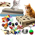 Jalousie Cat Toy Assortment Scratcher and Activity Center