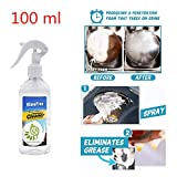 Rinse-Free Cleaning Spray Grease Cleaner All in One All Purpose Foam Kitchen Bathroom Toilet Car Wash Fresh Scent Metal Plastic Leather Fabric Glass Stainless Surface Effective Clean Supplies (100ml)