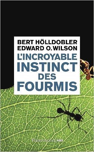 L'incroyable instinct des fourmis : De la culture du champignon à la civilisation - Hölldobler Bert Wilson Edward O