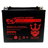 FirstPower YTX20L-BS Motorcycle Battery for Harley Softai...