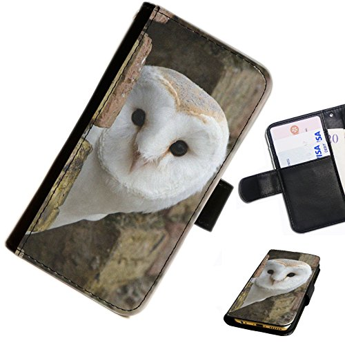 Hairyworm - Barn owl looking past wall Apple Iphone 3G, 3Gs leather side flip wallet cell phone case, cover with card slots, money slot and magnetic clasp to close.
