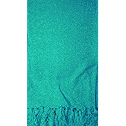 Manual Indoor Outdoor Textured Fringed Throw Blanket AICWBLT 50x60 Turquoise