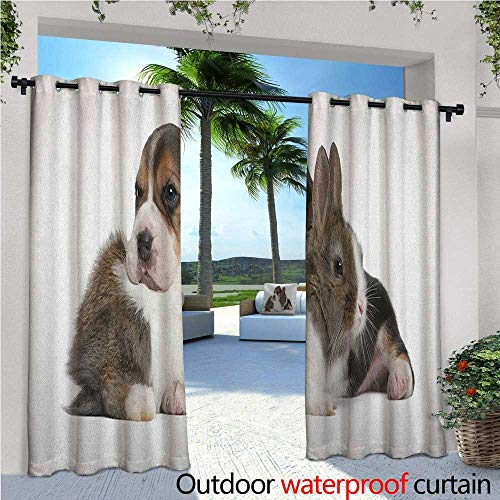 """Beagle Indoor/Outdoor Single Panel print Window Curtain Pets Rabbit and Puppy Animal Kingdom Friendship Best Companions Bunny Picture Silver Grommet Top Drape W108"""" x L108"""" Taupe Black White -  familytaste"""