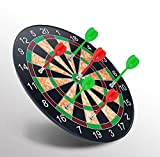 Minihorse-Magnetic Dart Board & Plastic Magnetic Darts Target Game Toys (Red Green) Durable and Safe Gifts For 7-18 Year Old Boys&Girls