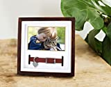 Pearhead Pet Collar Keepsake Picture Frame, Pet
