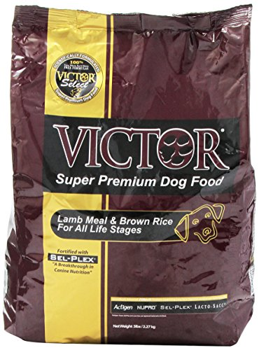 Where To Buy Victor Dog Food Online