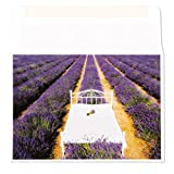 Bed in Lavender Field Anniversary Card