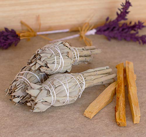 Home Cleansing and Blessing Kit - Smudging Chakra Balancing, White Sage, Palo Santo Sticks, Abalone Shell, Candle, Healing Incense, Good Luck, Purifying, Protection, Spiritual Cleansing, Meditation by My Lumina (Image #3)