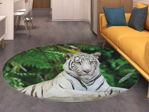 Tiger Anti-Skid Area Rug Albino Bengal Cat Sitting on a Rock in Forest Southeast Asia Indigenous Species Soft Area Rugs Fern Green White
