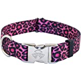 Country Brook Design Premium Dog Collar - Animal Collection