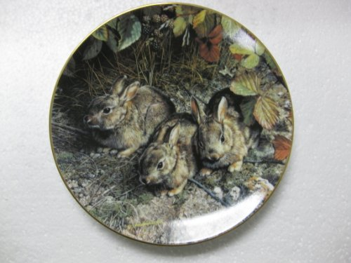 """W.S. George Fine China-Shy Explorers by Carl Brenders-4th Issue In The Our Woodland Friends Collection. 8.5"""" Diameter"""