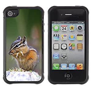 iDesign Rugged Armor Slim Protection Case Cover - Cute Chipmunk Squirrel - Apple Iphone 4 / 4S