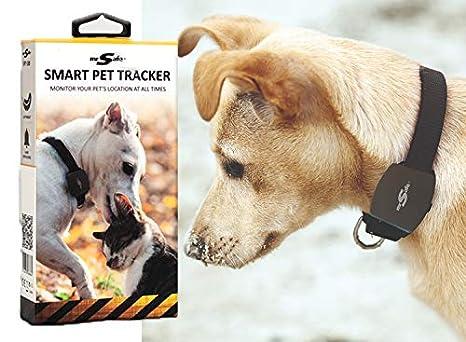 Mr. Rastreador GPS Seguro para Perros - Collar para Perros ...