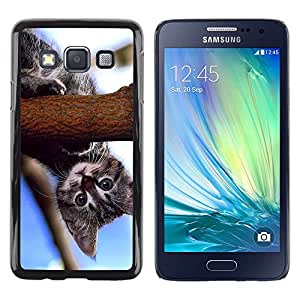 TECHCASE**Cubierta de la caja de protección la piel dura para el ** Samsung Galaxy A3 SM-A300 ** Curious Baby Kitten Cat Blue Nature