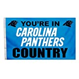 NFL Carolina Panthers Country 3-by-5 Feet Flag with Grommetts