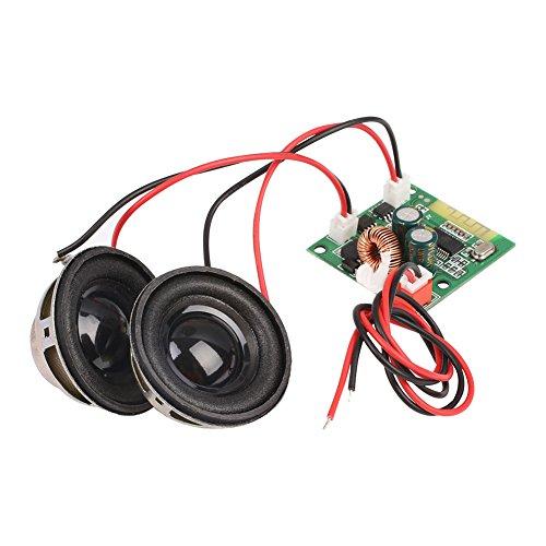 Duoying Tablero del Amplificador de Audio de Bluetooth Altavoces Dobles Receptor Auto Equilibrio Auto