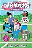 Shaken Up (The Kicks)