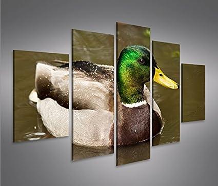 Quadro moderno Drake Patos Hotel Impresión sobre lienzo ...