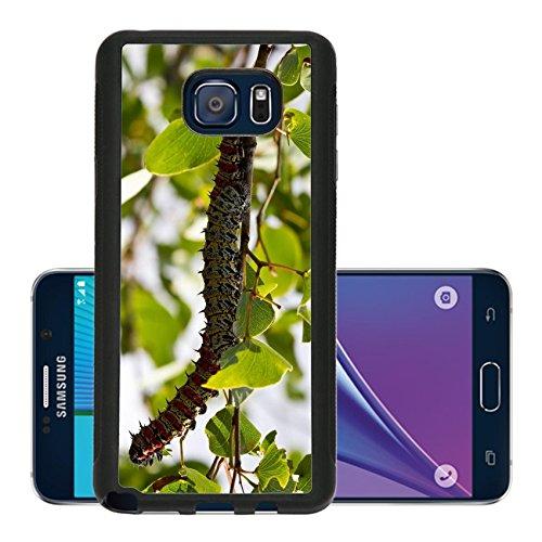 liili-premium-samsung-galaxy-note-5-aluminum-backplate-bumper-snap-case-mopane-worm-on-leaf-colourfu