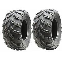 Conjunto de 2 neumáticos Quad 25X10-12 neumáticos