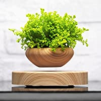NNDA CO Levitating Plant Pot, Floating Pot for Bonsai, Air Bonsai Pot Home Office Decor Gift (Not Include Plant)