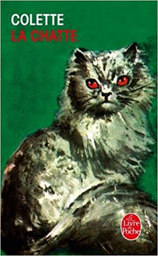 gros livre chatte