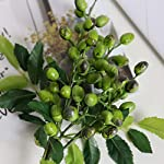 Fine-Fake-Berry-Branches-Green-Artificial-Berries-Stems-for-Crafts-Decoration-Flowers-Arrangements-Bouquets-Plastic-Plants-Floral-Greenery-Stems-for-Home-Party-Wedding-Decoration-Green