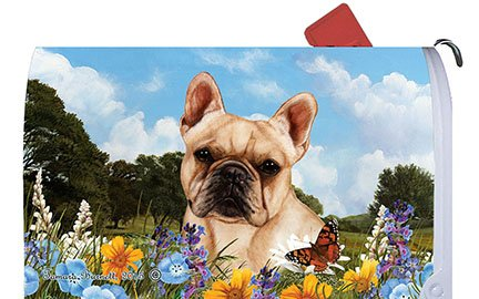 French Bulldog Cream - Best of Breed Dog Breed Mail Box Cover