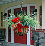 16'' Diameter Imperial Hanging Planter with Coco Liner