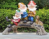 Wonderland Playful Gnome / Dwarf / Gnomes (Garden Decor Or Home Decoration Item, Show Piece , Gifting , Gift , Kids Room Décor)