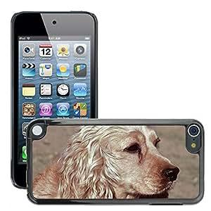 Etui Housse Coque de Protection Cover Rigide pour // M00112294 Perro Cocker Spaniel Animal Aport // Apple ipod Touch 5 5G 5th