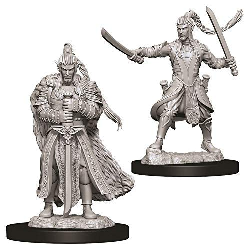 W9 Male Elf Paladin Dungeons /& Dragons Nolzur`s Marvelous Unpainted Miniatures