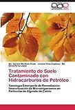 Tratamiento de Suelo Contaminado con Hidrocarburos de Petróleo, Ma. Adriana Martínez-Prado and Joaquín Pérez-López Pinto-Espinoza, 3846562025