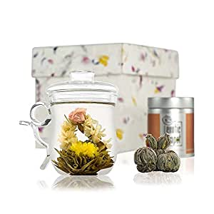Glass Infuser Mug Flowering Tea Discovery Set