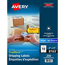 """Avery Shipping Labels with TrueBlock Technology for Inkjet Printers,  2"""" x 4"""", White, Rectangle, 250 Labels, Permanent (8163) Made in Canada"""