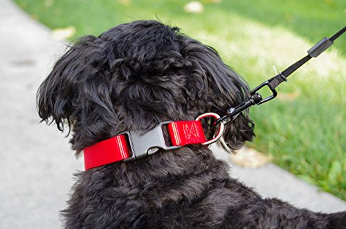 Sofi's Nylon Adjustable Dog Collar – Soft and Pliable - Strong Quick Release Plastic Buckle – Zinc Alloy Loop for Leash Attachment (Large, Red) (Tagless Cat Collar)