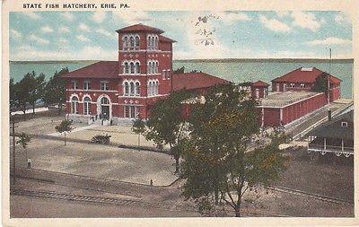 Pa Vintage Linen - F9178 PA, Erie Fish Hatchery Postcard